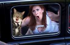 Feline Photobomb Blogs