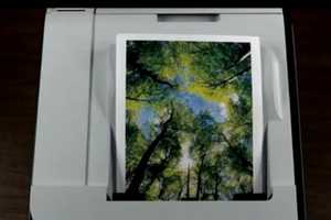 'Print A Forest' Plants a Tree for Every Hundred Pages