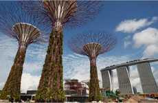 Urban Jungle Cities