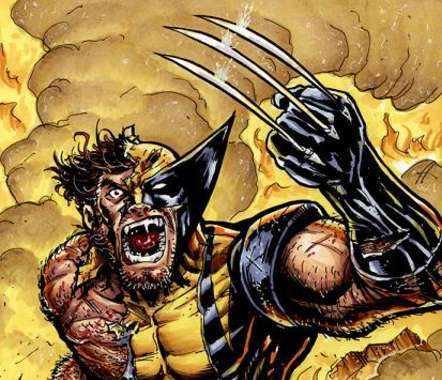 Wolverine Sightings