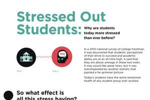The Stressed Out Students Infographic Shows the Impact of Pressure