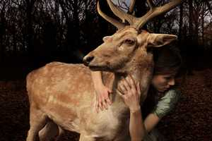 Tom Chambers Captures Humans & Animals as One Being