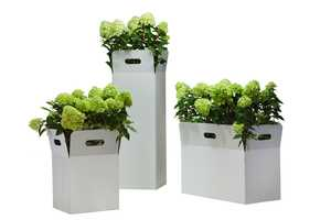 Flora Box Planters Make Scrappy Look Smart