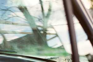 Jennilee Marigomen Captures Nature's Lonely & Desolate Moments