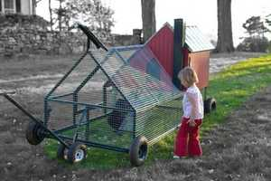 The Front Yard Coop Makes Urban Farming a Snap