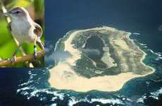 Laysan Island Has Been Donated for Exclusive Use by Millerbirds