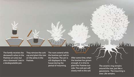 Creative Cremation Cultivation - Poetree is a Plant that Grows from the Ashes of Your Loved Ones