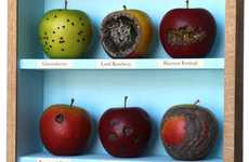 Festering Fruit Installations