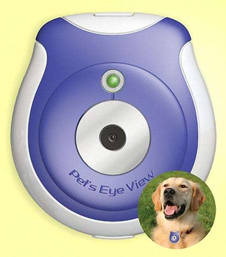 Animal Collar Spy Cams - Pet's Eye View Camera Lets You Know What Your Pet is Doing