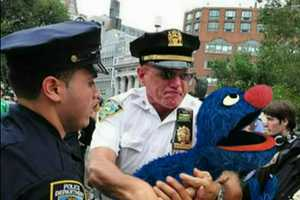 The Occupy Sesame Street Movement is Rioting Based on Reality
