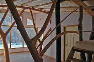 Whole Tree Architecture is Putting a Green Spin on Building Convention