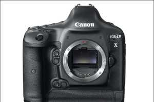 The Canon EOS-1D X is Chic and Stylish