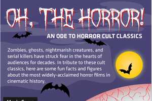 The Cheap Sally Scary Movie Infographic is a Scream