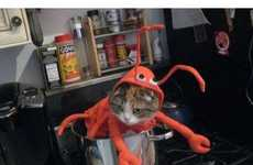 18 Feline Halloween Fashions