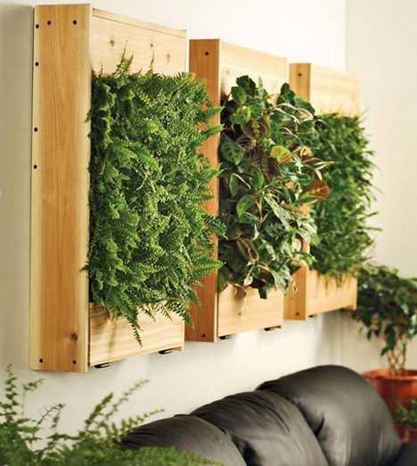 Urban Gardens - Living Wall Planters