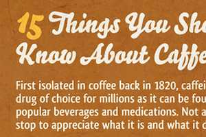 The 15 Things You Should Know About Caffeine Infographic is Useful
