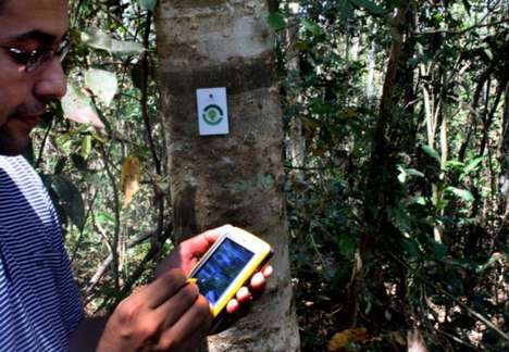 Tree-Tracking Chips - The Green Action Institute is Preventing Deforestation with RFIDs