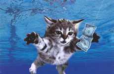 Cat-Altered Album Blogs