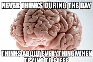 The Scumbag Brain Meme Curates Annoying Thoughts in Your Cranium