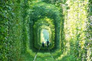 The Tunnel of Love is a Real-Life Fairytale Location