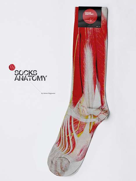 Anatomy Socks