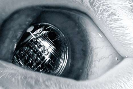 Bionic Lenses by University of Washington