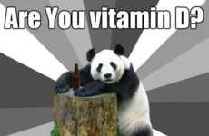 Failed Flirting Bear Memes