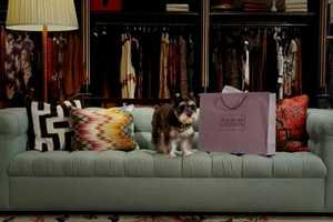 Bergdorf Goodman Holiday Video Has Canines Indulging in Luxury