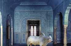 Karen Knorr Represents Indian Fables and Myths Through Photography