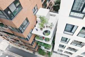 Ryue Nishizawa Designs a Green Escape Within Contemporary Tokyo
