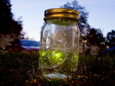 beautiful fireflies