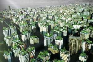 Wassim Melki Hopes Plans to Create Beirut Wonder Forest