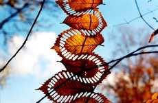 Deconstructed Nature Designs