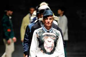 Andrea Pompilio Fall/Winter 2012 Collection Monkeys Around on the Runway