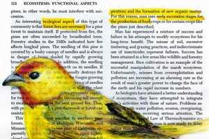 Paula Swisher Beautifully Draws Birds on Old Science Books