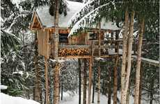 Mountain Forest Lodgings