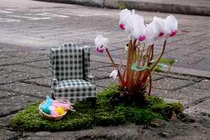 Steve Wheen Turns Hazardous Roads Into Flowery Fun