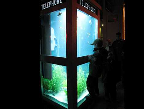 Urban Aquarium - Fish Tank Phone Booth