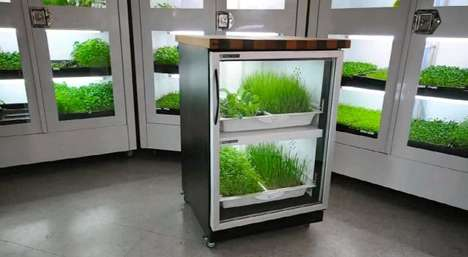 Urban Cultivator