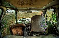 Abandoned Auto Photography