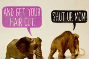 Toy Stories by Aled Lewis Includes Some Witty Woolly Mammoths