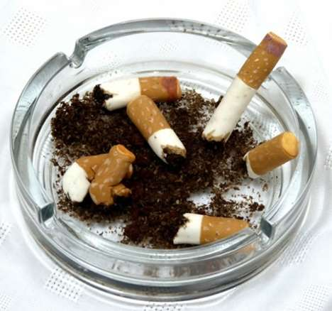 edible ashtray and cigarette butts