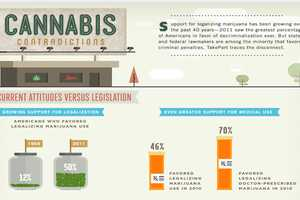 The Wacky Weed Attitudes Infographic Breaks Down Legalization