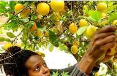24 Local Food Innovations