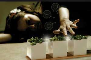 The Gaia Natural Bio Lamp Makes Your Mini Garden Shine With Love