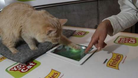Interspecies iPad Games - 'You vs. Cat' Allows You to Face off Against Your Feline Friends