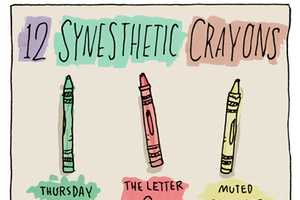 The Synesthetic's Crayon Box by Grant Snider is an Experience