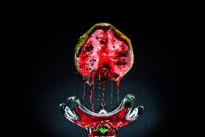 The Klaus Pichler 'One Third' Series Reveals the Rotten Natu