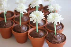 These Flower Pot Cupcakes Are the Perfect Way to Welcome Spring