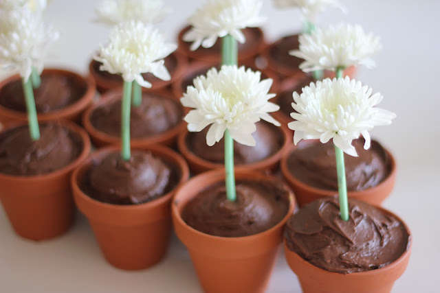 Precious Potted Treats